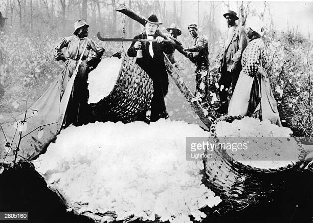 A man weighs bales of cotton while a group of AfricanAmerican farm workers watchlate 19th Century A sheet of picked cotton is in the foreground