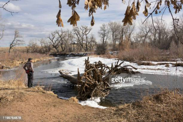 man winter trail runner standing south platte river chatfield state park colorado - milehightraveler stock pictures, royalty-free photos & images