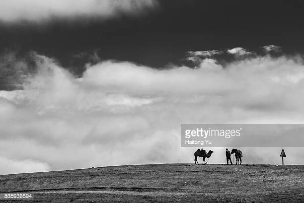 Man with a horse and a camel standing on mountain