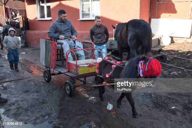 A man with a miniature horse and cart travels down a street in the Fakulteta neighborhood of Sofia March 16 2019 during Horse Easter which is...