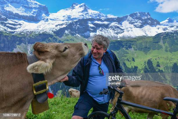 Man with a mountain bike stroking a cow, Switzerland