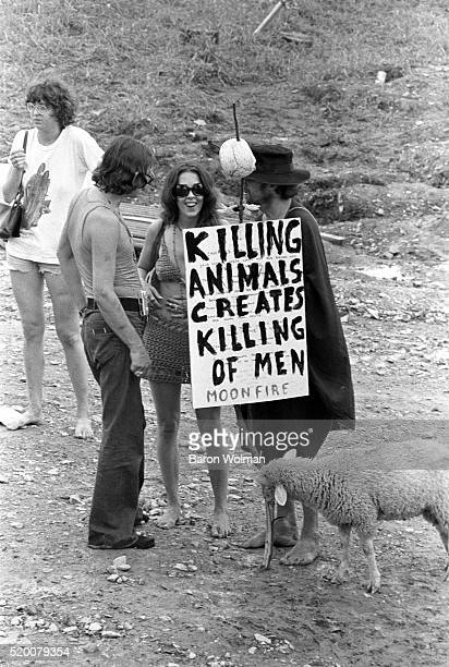 A man with a sheep holds a provegetarian poster at the Woodstock Music Art Fair Bethel NY August 15 1969