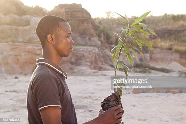 A man with a young tree