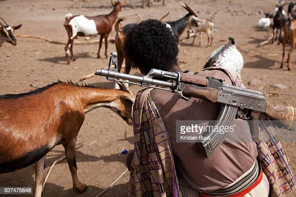 A man with an old AK47 on his back with his goats The gun is to protect his livestock from wild animals and rustlers from other local clans The...