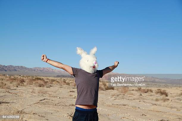 man with arms outstretched wearing rabbit mask on field - rabbit mask stock pictures, royalty-free photos & images