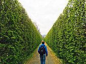 Man with backpack walking forward in a green tunnel picture id831708286?b=1&k=6&m=831708286&s=170x170&h=3gxkc8pdxp okbgkvzjsky6m7msfzkapod gzj2hex0=