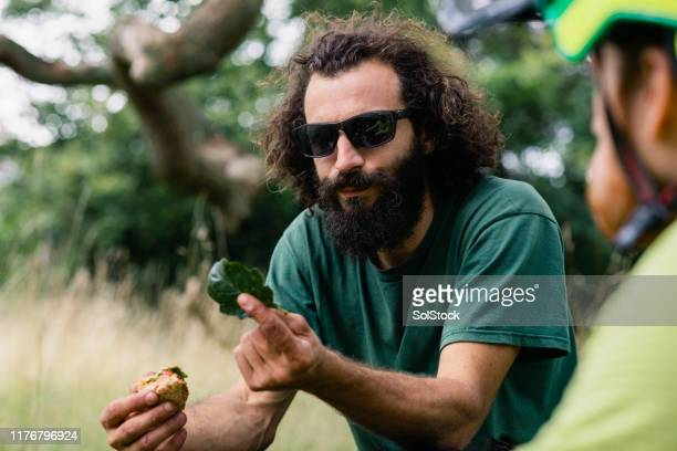 man with beard wearing sunglasses holding oak leaf - environmentalist stock pictures, royalty-free photos & images