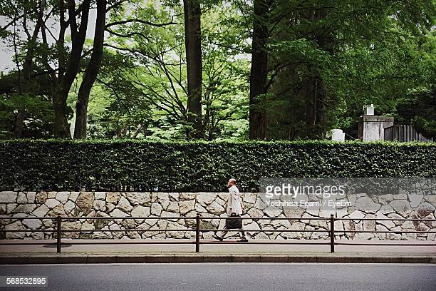 Man With Briefcase Walking On Sidewalk By Trees