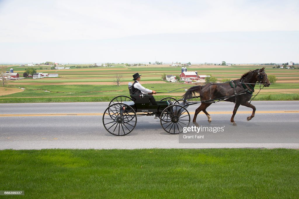 Man with buggy. : Stock Photo