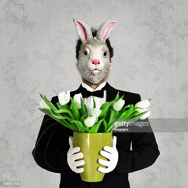 man with bunny mask holding tulips - rabbit mask stock pictures, royalty-free photos & images