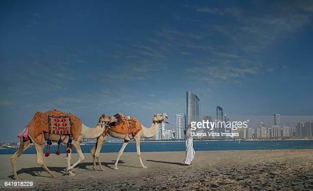 Man with camels and futuristic city