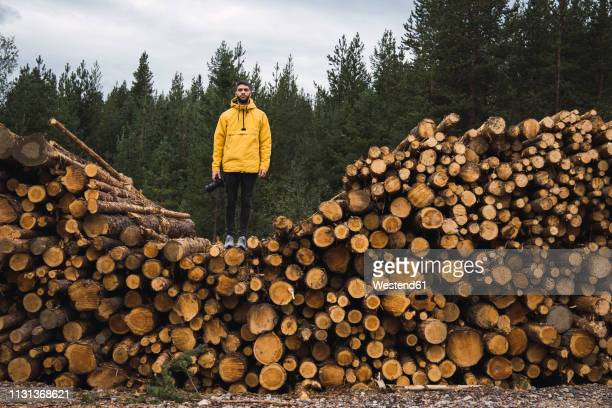 man with camera standing on stack of wood - finlandia fotografías e imágenes de stock
