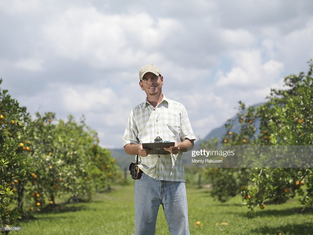 Man With Clipboard In Orange Grove : Stock Photo