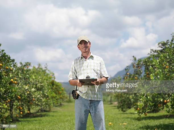 man with clipboard in orange grove - orange orchard stock photos and pictures