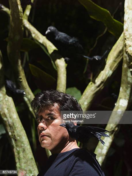 man with crows in the forest - las posas stock pictures, royalty-free photos & images