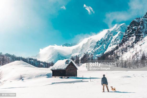 man with dog at the leash in winter alps. - cabaña fotografías e imágenes de stock