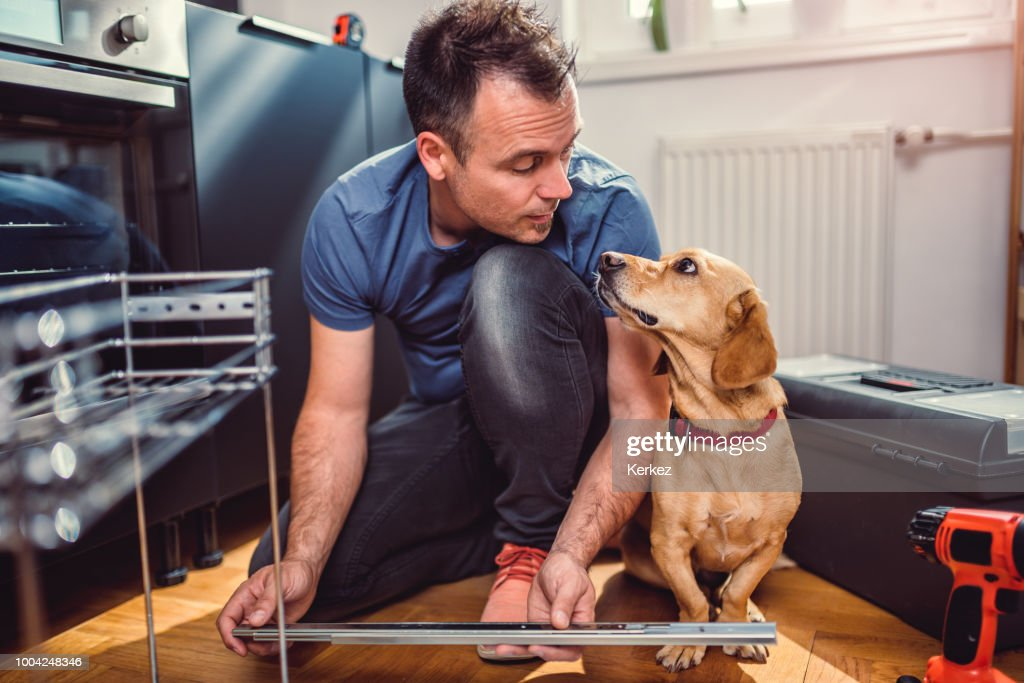 Man with dog building kitchen cabinets : Stock Photo