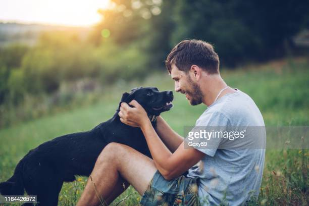 man with dog - labrador retriever stock pictures, royalty-free photos & images