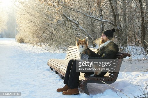 Fine Man With Dog Sitting On Bench At Snow Covered Field High Res Cjindustries Chair Design For Home Cjindustriesco