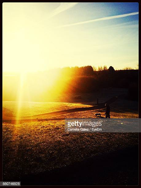 man with dog walking field against sky during sunset - gillingham stock pictures, royalty-free photos & images