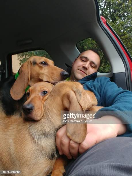 Man With Dogs Sitting In Car