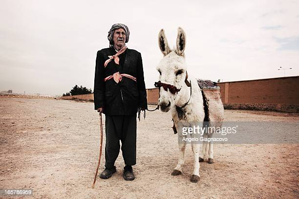 Man with donkey waiting for tourists in the archaeological site of yazd, Iran.