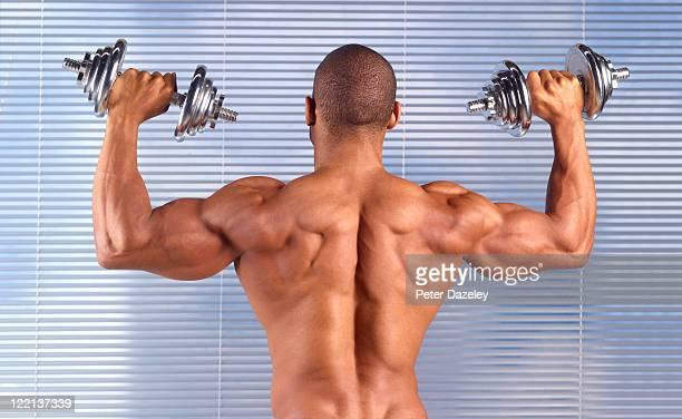 man with dumbbells in gymnasium - struttura muscolare del torso foto e immagini stock