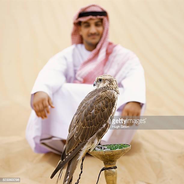 man with falcon - hugh sitton - fotografias e filmes do acervo
