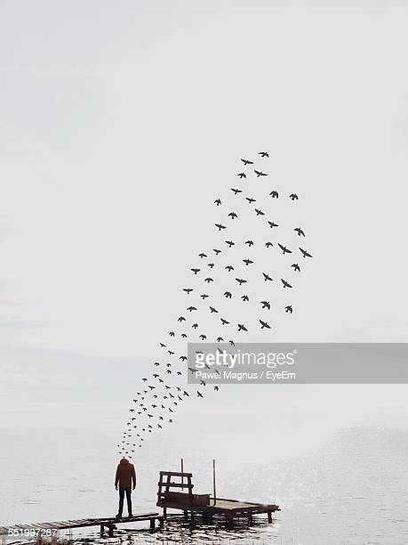 Man With Flock Of Birds Coming From Head
