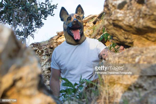 man with german shepherd dog mask and tattooed arm  in a house in ruins - dog mask stock pictures, royalty-free photos & images