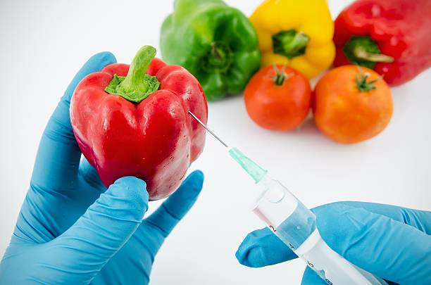 a research on the genetic engineering of food products