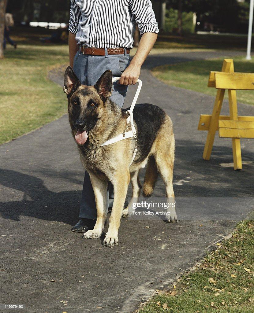 Homme avec un chien guide : Photo