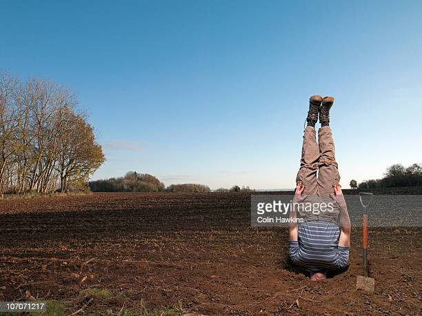 man with head in soil in field - colin hawkins stock pictures, royalty-free photos & images