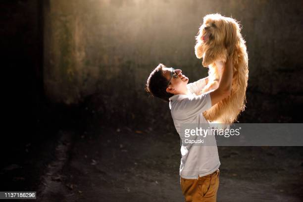 man with his dog indoor backlit - lhasa apso stock photos and pictures