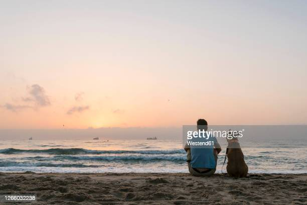 man with his dog sitting on beach sand at dawn - simple living stock pictures, royalty-free photos & images