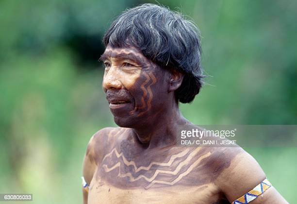 A man with his face covered in ritual decorations Yanomami Indians from the Cavaroa tribe Amazonas near the Siapa River Guyana Venezuela