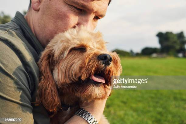 man with his pet dog - southport england stock pictures, royalty-free photos & images