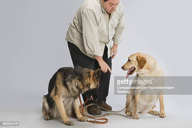 man with his two dogs