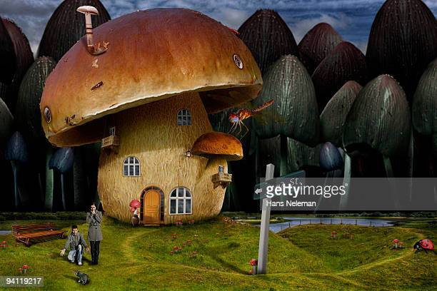 Man with his wife outside a mushroom shaped house, Republic of Ireland