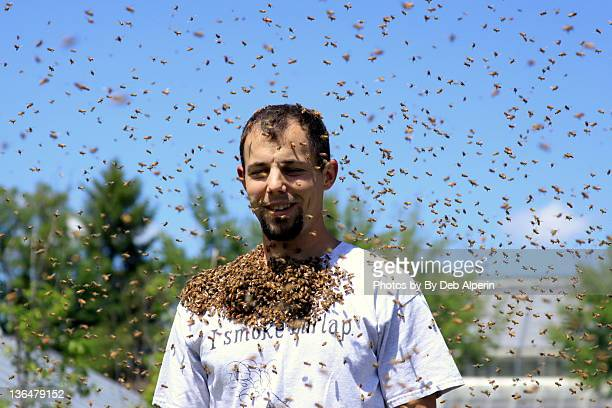 Man with honey bee beard