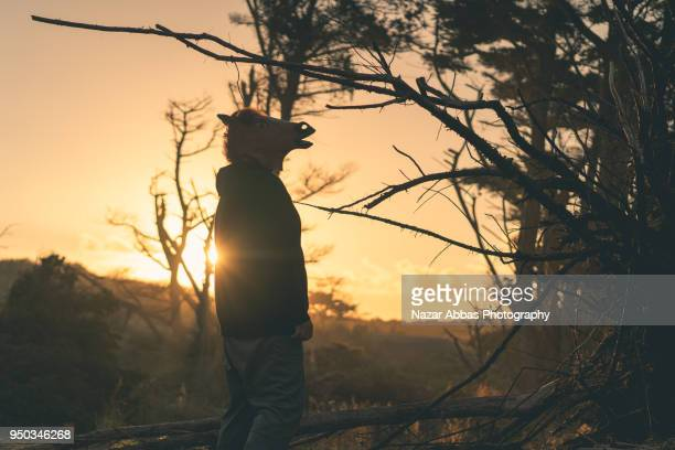 Man with horse head looking away with sunlight in background.