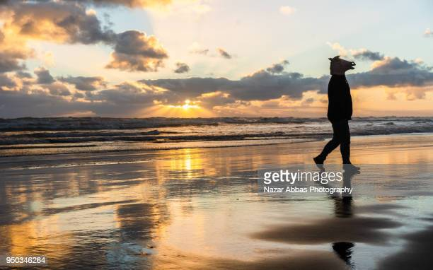 Man with horse mask on walking on beach with sunset in background.