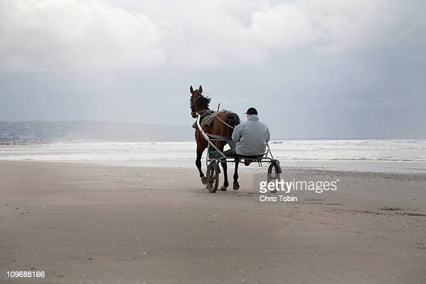 man with horse-drawn cart on the beach - animal powered vehicle stock photos and pictures