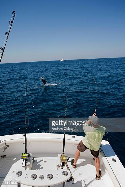 Man with jumping Sailfish on rod on back of boat.