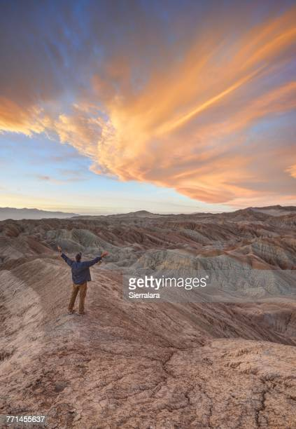 man with outstretched arms, anza-borrego desert state park, california, america, usa - anza borrego desert state park stock pictures, royalty-free photos & images