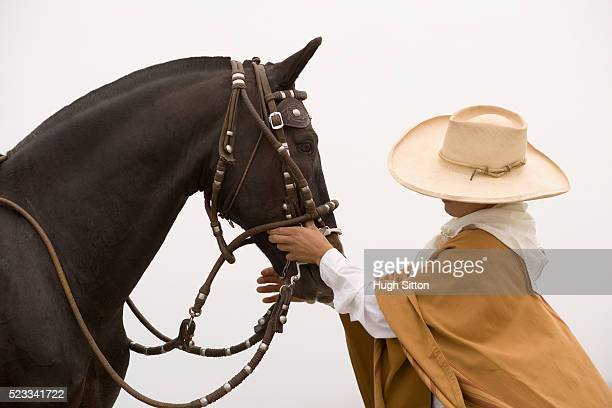 man with peruvian paso horse - hugh sitton stockfoto's en -beelden