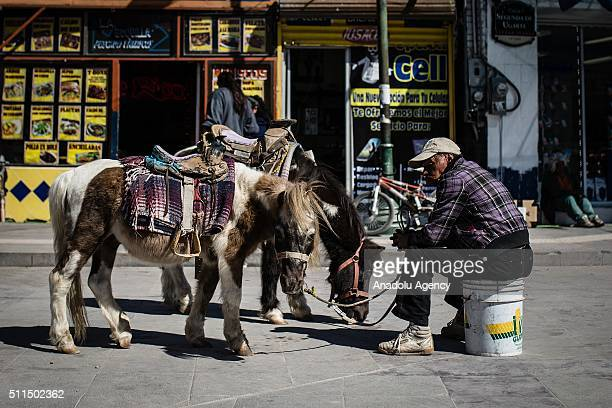 A man with ponys is seen in Ciudad Juarez Mexico on February 20 2016 In recent years Ciudad Juarez has been an epicenter of violence in the struggle...