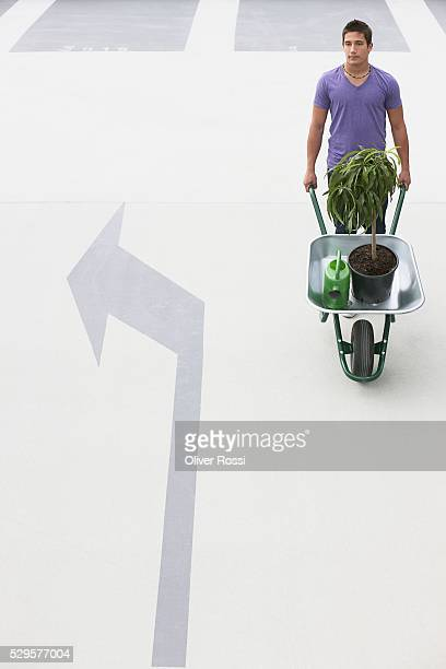 Man with Potted Plant in Wheelbarrow