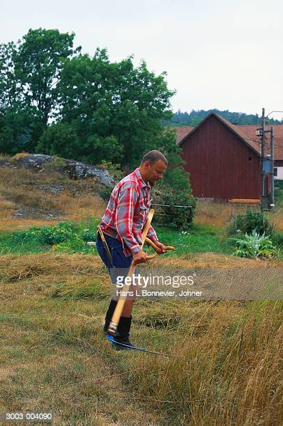 man with scythe cutting grass - scythe stock photos and pictures
