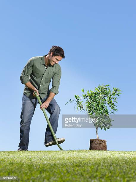 Man with shovel planting small tree